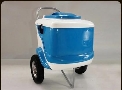 L450 Blue/White