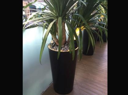 Planter Box Round