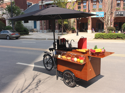 JX T04a Fashion Cargo Bike