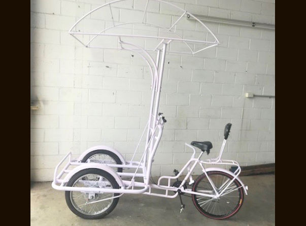 Dome Canopy / Front Bike