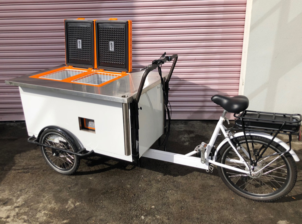 DUAL TEMP FRIDGE/FREEZER BIKE