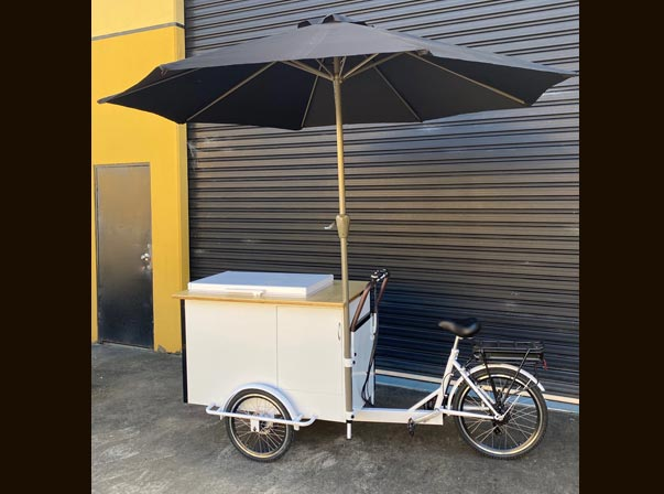 Ice Cream Battery Bike