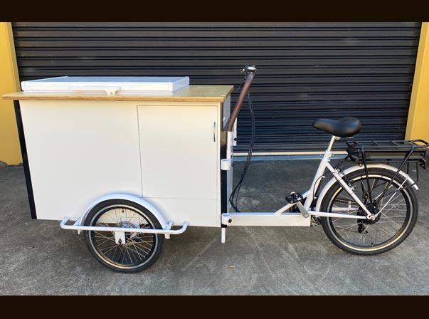Electric Bike & Battery Freezer